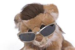 profil lwa Zdjęcie Stock