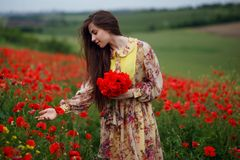 Profil piękna młoda kobieta, długie włosy, pozycja w czerwonym makowym kwiatu polu, piękny krajobrazowy tło obraz royalty free