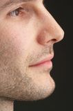Profile. Of a manly face Stock Photography