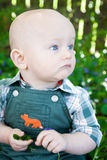Profile of a baby Stock Images
