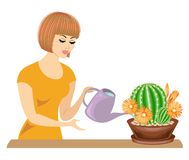 Profile of a beautiful girl. The lady cares about the colors of the room, cacti. The woman poured them out. Vector illustration stock illustration