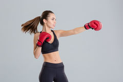 Profile of beautiful young boxing sportswoman in red gloves Stock Image