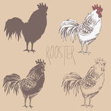 Profile of cock sketch. Illustration profile standing roosters. Four variants. Silhouette, outline, fill with outlines, fill only. Handmade drawing cock. Vintage Royalty Free Stock Image