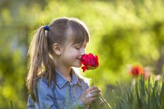Profile of cute pretty smiling child girl with gray eyes and long hair smelling bright red tulip flower on blurred sunny summer. Green bokeh background royalty free stock photos