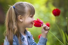Profile of cute pretty smiling child girl with gray eyes and long hair smelling bright red tulip flower on blurred sunny summer. Green bokeh background royalty free stock image