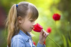 Profile of cute pretty smiling child girl with gray eyes and long hair smelling bright red tulip flower on blurred sunny summer royalty free stock photos