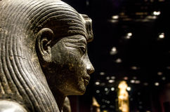 Profile of an egyptian sphinx statue Royalty Free Stock Photography