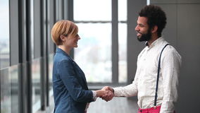 Profile of female creative director and male advertising executive shaking hands. Profile of beautiful female creative director and male advertising executive stock footage