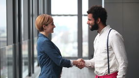 Profile of female creative director and male advertising executive shaking hands. Profile of beautiful female creative director and male advertising executive stock video footage