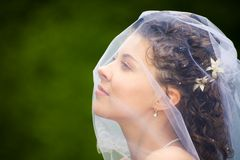 Profile of fiancee. Image of profile of beautiful fiancee in a natural environment royalty free stock photography