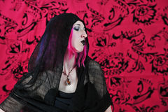 Profile of goth Royalty Free Stock Images