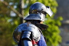Profile knight Royalty Free Stock Images
