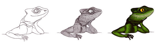 Profile Lizard. Hand drawn.tutorial drawing Royalty Free Stock Image
