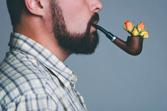 Profile of man with beard and smoke pipe with rose flowers insid Royalty Free Stock Image
