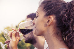 Profile portrait of young couple toasts Stock Images