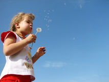 Profile portrait of young girl blowing dandelion off Royalty Free Stock Image