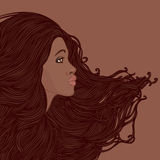 Profile of pretty young african american woman. Beauty Salon Set: Profile of pretty young african american woman with beautiful long hair. Vector illustration Stock Images