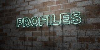 PROFILE - Rozjarzony Neonowy znak na kamieniarki ścianie - 3D odpłacająca się królewskości bezpłatna akcyjna ilustracja Zdjęcia Stock