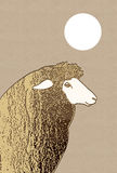 Profile of sheep on brown background Royalty Free Stock Photo
