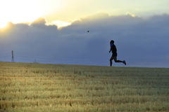 Profile silhouette of young man running in countryside training cross country jogging discipline in summer sunset Stock Photography