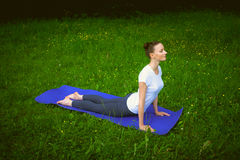 Profile of smiling beautiful young woman working out on blue mat in park alley, doing stretching exercises. Urdhva mukha shvanasana (upward facing dog pose), sun royalty free stock photos