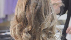 Profile of Smiling Young Woman with Hair Having Hair Cut and Styled by Stylist in Salon stock video