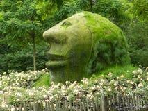 Profile of Stone Head Stock Photos