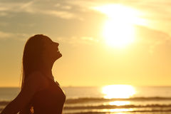Profile of woman breathing fresh air at sunset. Side view of back light of a woman silhouette breathing deep fresh air at warm sunrise in front of sun stock photo