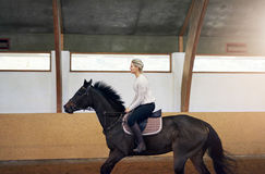 Profile of a woman on a horse Royalty Free Stock Images