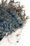 Profile woman portrait with curly hair Royalty Free Stock Image