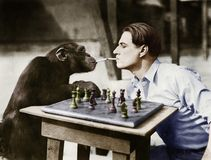 Profile of a young man and a chimpanzee smoking cigarettes and playing chess Stock Images