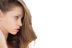 Profilera sikten av en allvarlig brunett som bort ser Arkivfoton