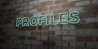 PROFILES - Glowing Neon Sign on stonework wall - 3D rendered royalty free stock illustration. Can be used for online banner ads and direct mailers Stock Photos