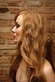 Profilez la verticale d'une femme avec le renivellement lumineux Image stock