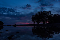Profili il cielo blu scuro con un'ombra dell'albero in un mare Fotografie Stock