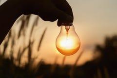 profili la mano che tiene la lampadina con il fondo della natura del tramonto Fotografia Stock