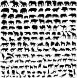 Profilo animale della siluetta immagine stock