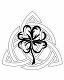 Profilo celtico Immagine Stock