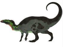 Profilo del Camptosaurus Fotografia Stock Libera da Diritti