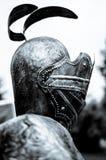 Profilo del cavaliere Fotografia Stock