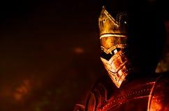 Profilo del cavaliere con le riflessioni del fuoco Immagine Stock