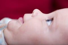 Profilo del fronte del bambino Immagini Stock