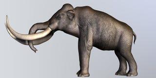 Profilo del lato del mammut colombiano Fotografie Stock Libere da Diritti