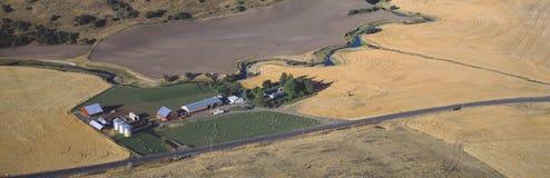Profilo dell'azienda agricola che coltiva, vicino al pullman, S E washington Fotografia Stock