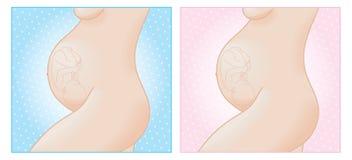 Profilo della donna incinta Immagine Stock
