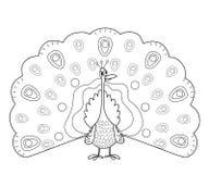 Profilo della pagina di coloritura del pavone divertente Fotografia Stock Libera da Diritti