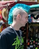 Profilo di un tipo con l'acconciatura punk Fotografia Stock