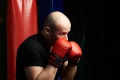 Profilowy portret boksu mężczyzna Fotografia Stock