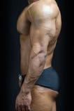 Profilowy widok bodybuilder półpostać, Pecs, ręka, abs fotografia stock