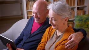Profilskott av höga gråhåriga caucasian par som har online-video appell med deras vänner på minnestavlan på det hemtrevliga hemme lager videofilmer